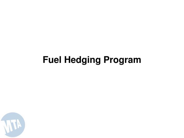 Fuel Hedging Program
