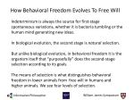 how behavioral freedom evolves to free will