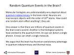random quantum events in the brain