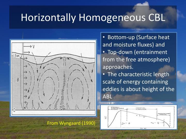 Horizontally Homogeneous CBL