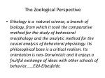 the zoological perspective