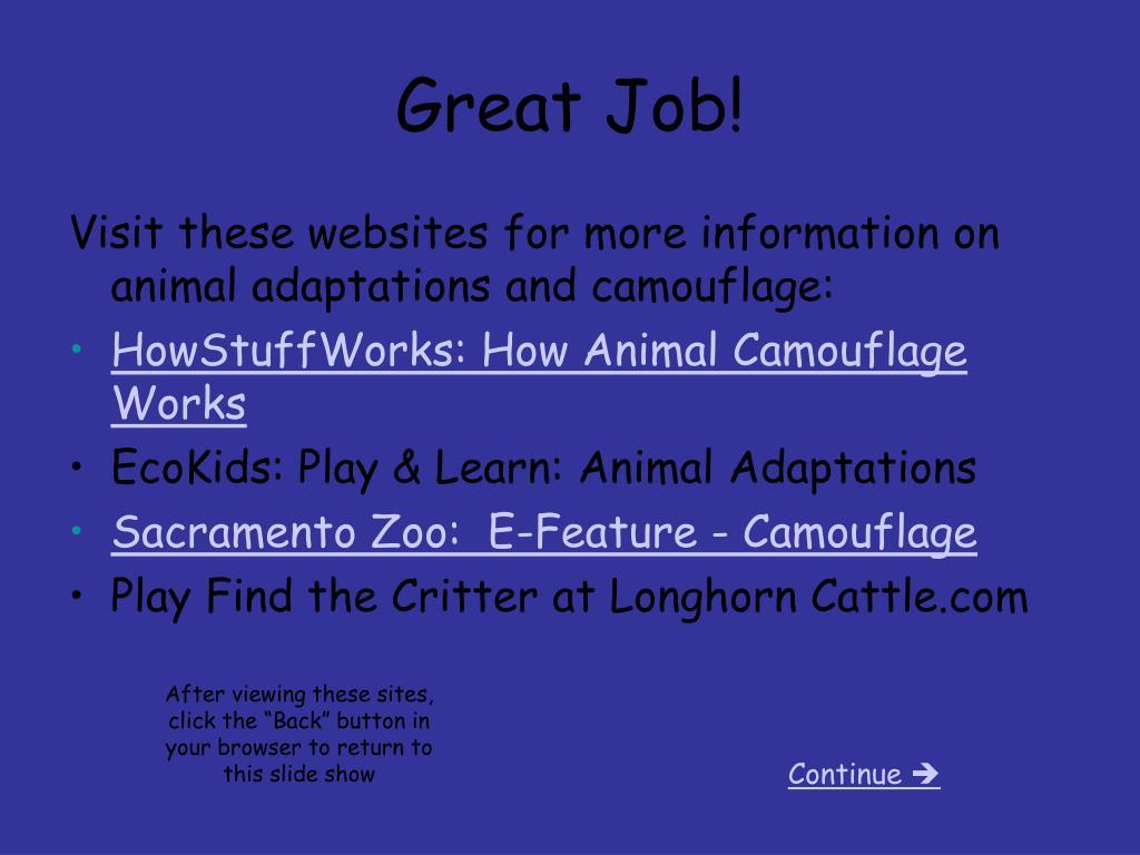 PPT - Animal Adaptations PowerPoint Presentation - ID:2773861