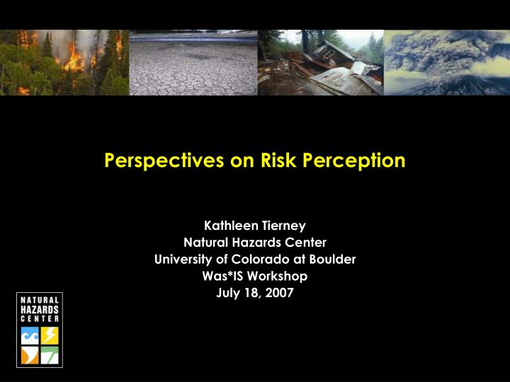 Perspectives on risk perception