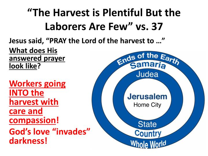 The harvest is plentiful but the laborers are few vs 37