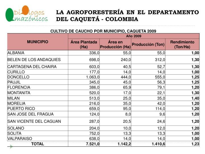La agroforester a en el departamento del caquet colombia1