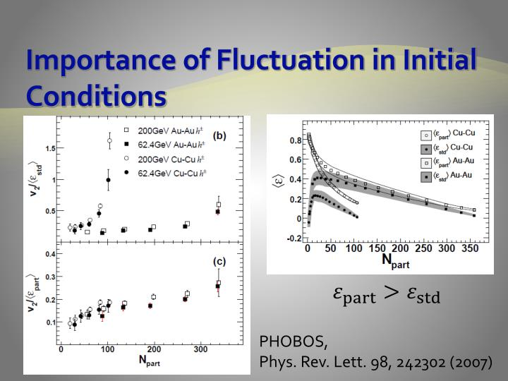 Importance of Fluctuation in Initial Conditions