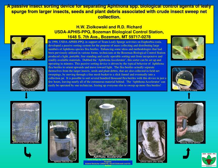 A passive insect sorting device for separating Aphthona spp. biological control agents of leafy spur...