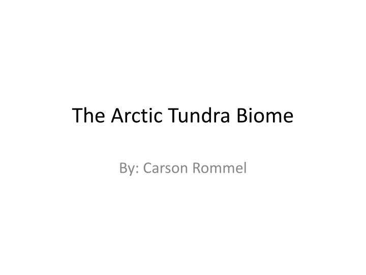 the arctic tundra biome n.