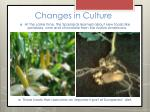 changes in culture8
