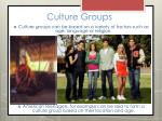culture groups1