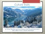 culture traits10