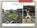culture traits2