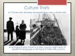 culture traits9