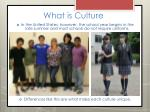 what is culture7