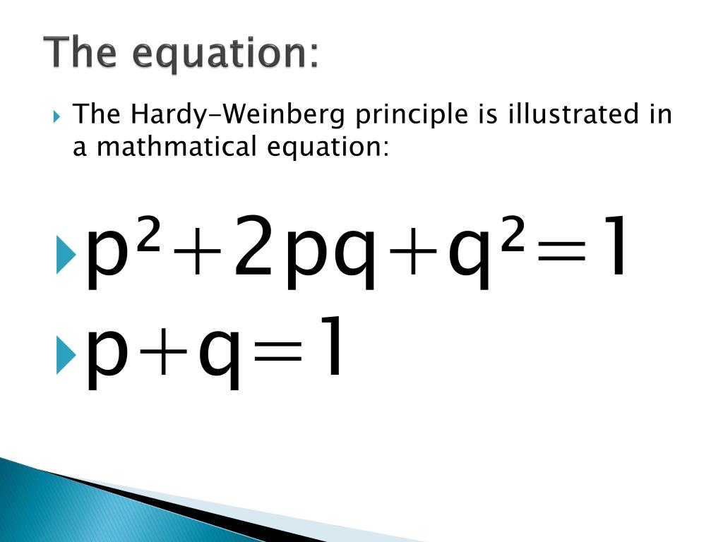 PPT - Hardy-Weinberg PowerPoint Presentation, free ...