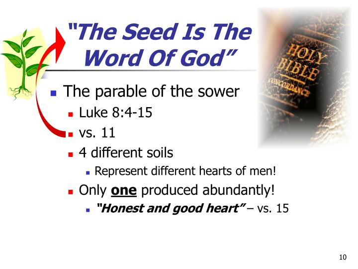 """""""The Seed Is The Word Of God"""""""