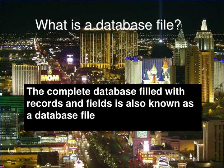 What is a database file?
