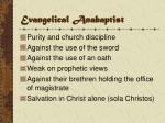 evangelical anabaptist