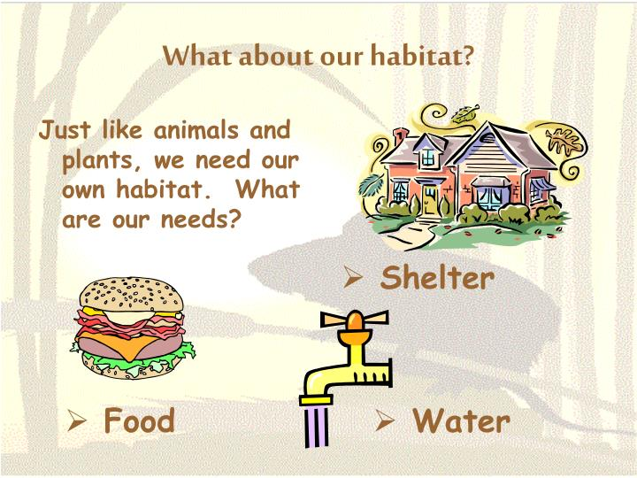 What about our habitat?