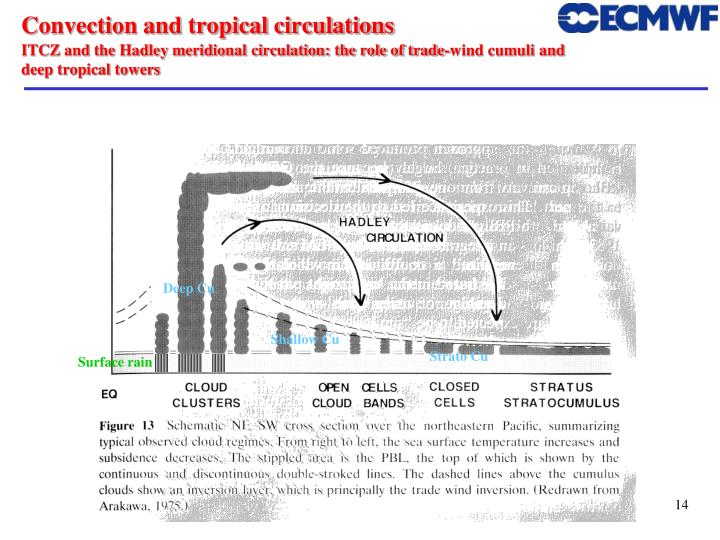 Convection and tropical circulations