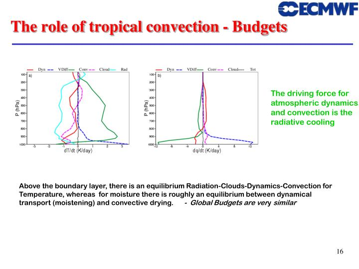 The role of tropical convection - Budgets