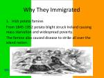 why t hey immigrated