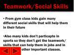 teamwork social skills