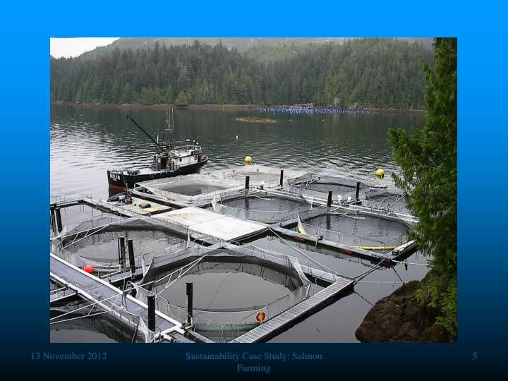 Sustainability Case Study: Salmon Farming