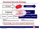 homeland security strategy