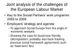 joint analysis of the challenges of the european labour market