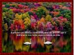 preciso um esfor o consciente para n o permitir que o sofrimento nos torne cegos beleza da vida