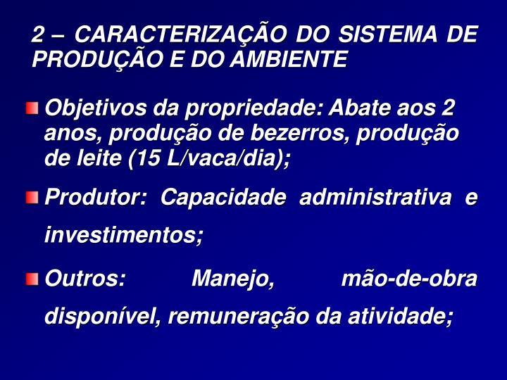 2 caracteriza o do sistema de produ o e do ambiente