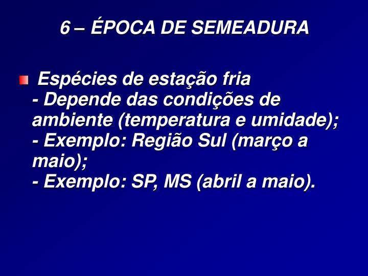 6 – ÉPOCA DE SEMEADURA