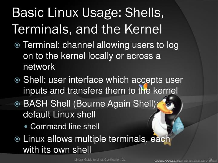 Basic Linux Usage: Shells, Terminals, and the Kernel