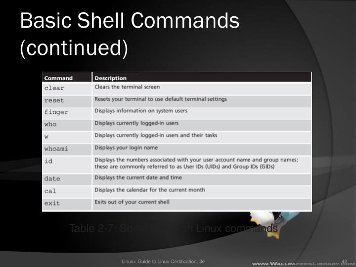 Basic Shell Commands (continued)