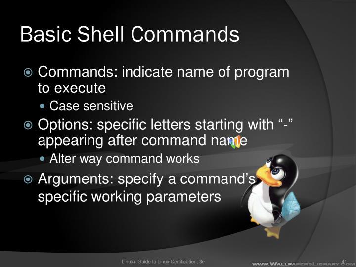 Basic Shell Commands