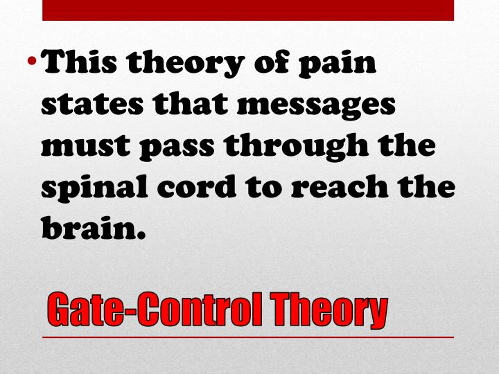 This theory of pain states that messages must pass through the spinal cord to reach the brain.