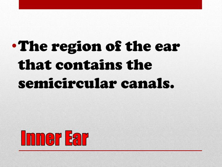 The region of the ear that contains the semicircular canals.
