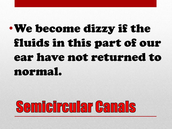 We become dizzy if the fluids in this part of our ear have not returned to normal.