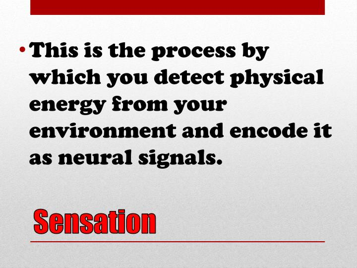 This is the process by which you detect physical energy from your environment and encode it as neural signals.