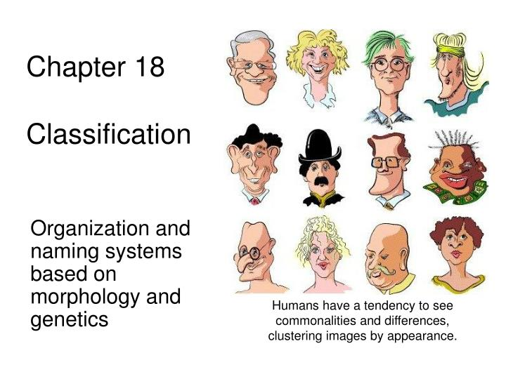 chapter 18 classification n.