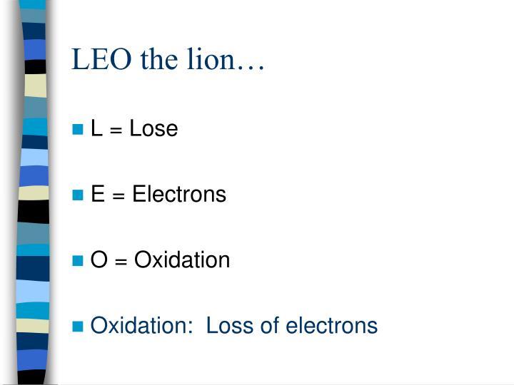 LEO the lion…