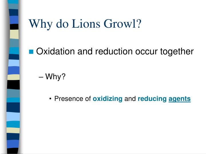 Why do Lions Growl?