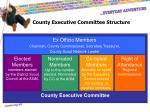 county executive committee structure