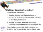 what is an executive committee2