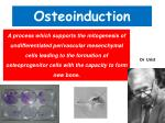 osteoinduction