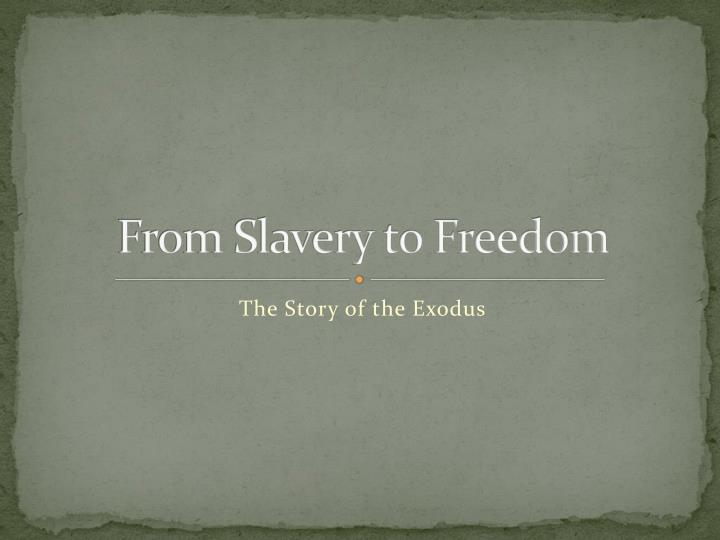 from slavery to freedom n.