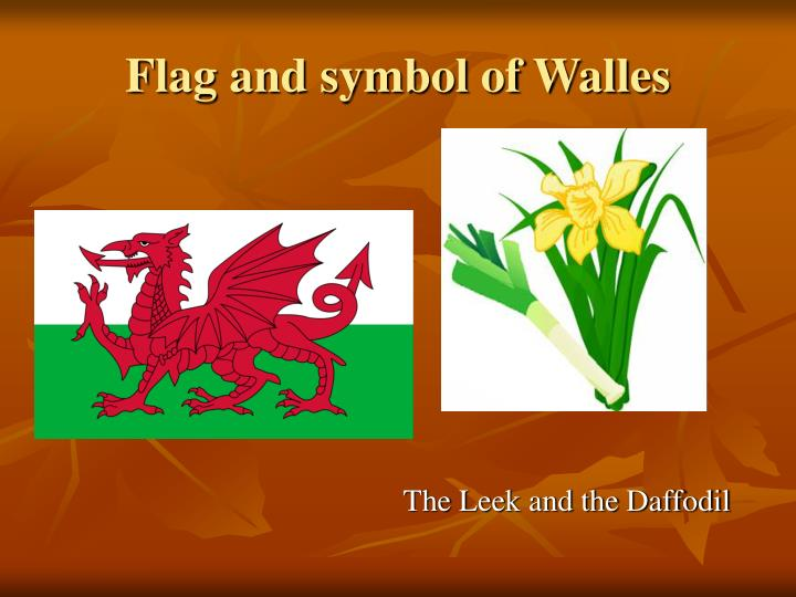 Flag and symbol of walles
