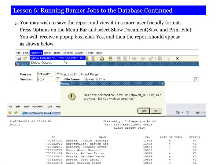 Lesson 6: Running Banner Jobs to the Database Continued