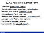 12a 5 adjective correct form